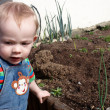 Stock Photo: Little boy by veg patch