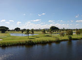 高尔夫球场在佛罗里达州 — 图库照片