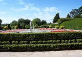 живописный сад — Стоковое фото