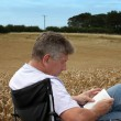 Man sitting by a corn field — Stock Photo
