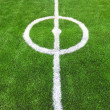 Stock Photo: Soccer field green grass