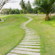 Stock Photo: Walkway on green grassy in golf club