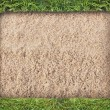 Green grass frame on sand background — Stock Photo