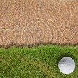 Golf ball on fresh green grass near water bunke — Stock Photo #9273733