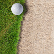 Golf ball on green grass near sand bunker — Stock Photo