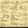Calligraphic design elements and page decoration set — Stock Vector #10444452