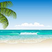 Tropic beach — Stock Vector