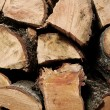 Wood logs — Stock Photo #8420384