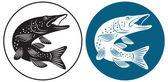 Pike fish — Stock Vector