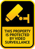 Video surveillance sticker — Stock Vector