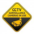 CCTV pictogram, video surveillance symbol — Stock Vector