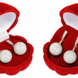 Silver earrings in beautiful caskets - shells — 图库照片 #8909487