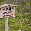 Stock Photo: One way warning sign