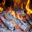 Burning fire — Stock Photo