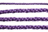 Paarse touw. — Stockfoto