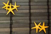 Seastars. — Fotografia Stock