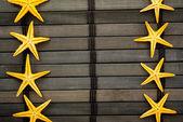 Seastars. — Stock Photo