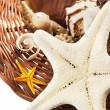 Basket with seashells. — Stock Photo