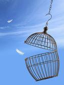 Frihet koncept. fly från buren — Stockfoto