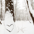 Heart shape on a snow covered tree — Stock Photo #8898193