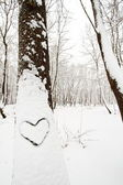 Heart shape on a snow covered tree — Stock Photo