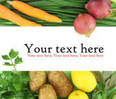 Background of fresh vegetables — Stock Photo