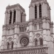 Notre Dame Cathedral, Paris — Stock Photo #8393360