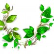 Branch with fresh green leaves - Stock Photo
