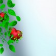 Two Beautiful bright hearts of red color with green leaves float — Stock Photo