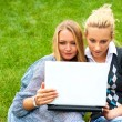 Portrait of two smiling women using laptop on a green meadow at the city park. Photo from above — Stock Photo