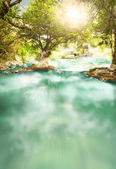 Clean lofty river at deep tropical fores at Dalat, Vietnam — Stock Photo