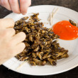 Stock Photo: Fried Crickets Meal wit sauce