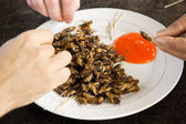 Fried Crickets Meal wit sauce — Stock Photo