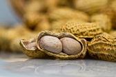 Opened Peanut Closeup — Stock Photo