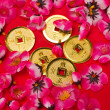 Chinese New Year - Emperor's Coins Ornaments II — Stock Photo