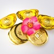 Stock Photo: Chinese New Year - Wealth Ornaments
