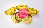 Chinese New Year - Wealth Ornaments — Stock Photo