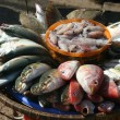 Stock Photo: Seafood at fish market