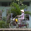 Vietnamese Woman on Bicycle - Stock Photo