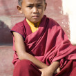 Novice Monk Nepal — Stock Photo #8276490