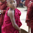 Novice Monk Myanmar — Foto de Stock