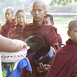 Novice Monks Myanmar — Foto Stock