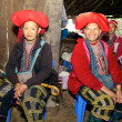 Red Dao Ethnic Minority Vietnam — Stock Photo #8276631