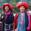 Red Dao Ethnic Minority Vietnam — Stock Photo