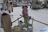 Może tys obrotu mekong delta Wietnam — Zdjęcie stockowe