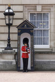 Royal Guard Buckingham Palace — Stock Photo