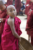 Novice Monk Myanmar — Stockfoto