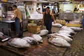 Mercado de pescado tsukiji tokio — Foto de Stock