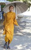 在柬埔寨的和尚 — 图库照片
