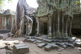 Ta Prohm Temple Cambodia — Stock Photo
